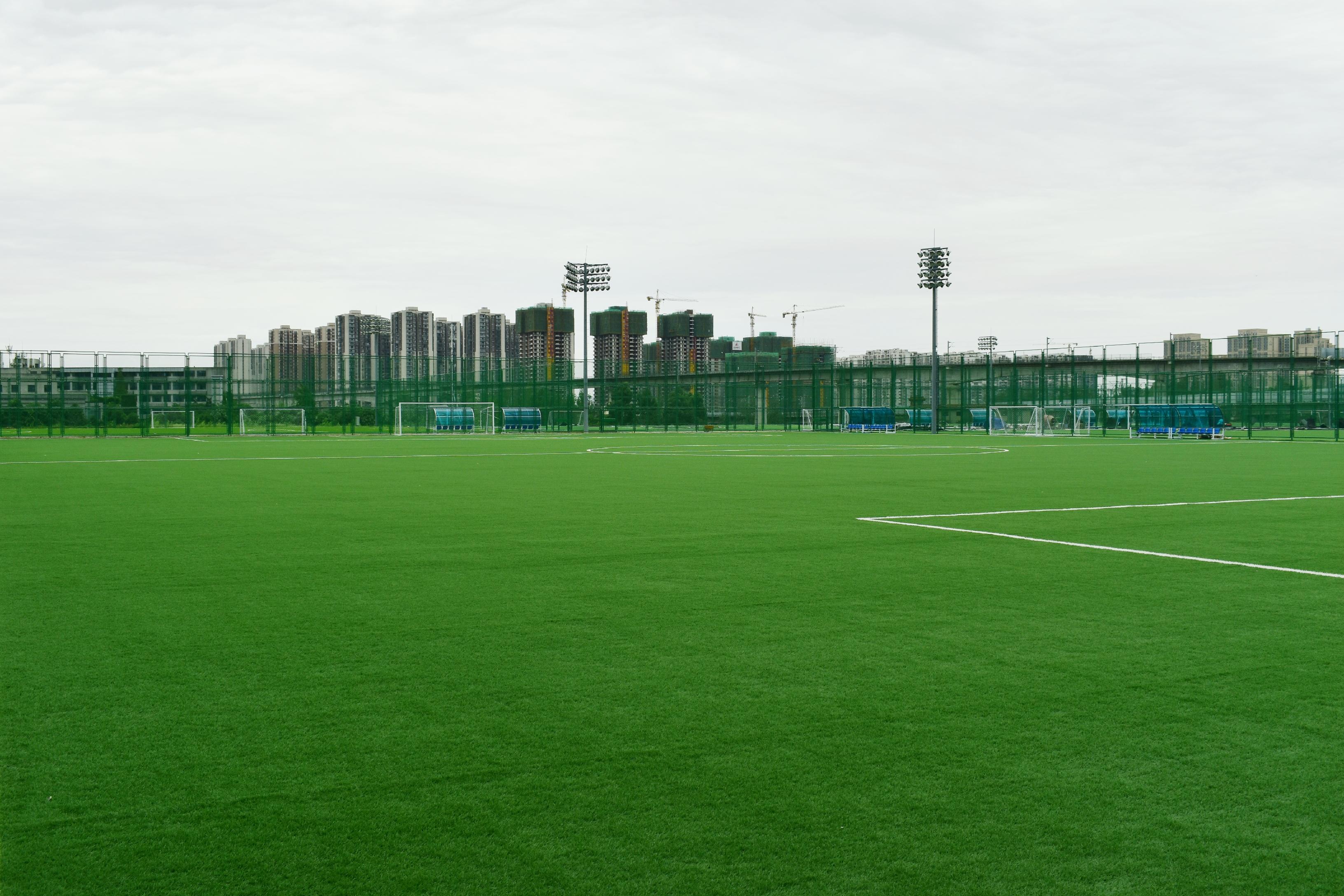 成都市锦江看个球官网在线直播看个球在线观看主题公园